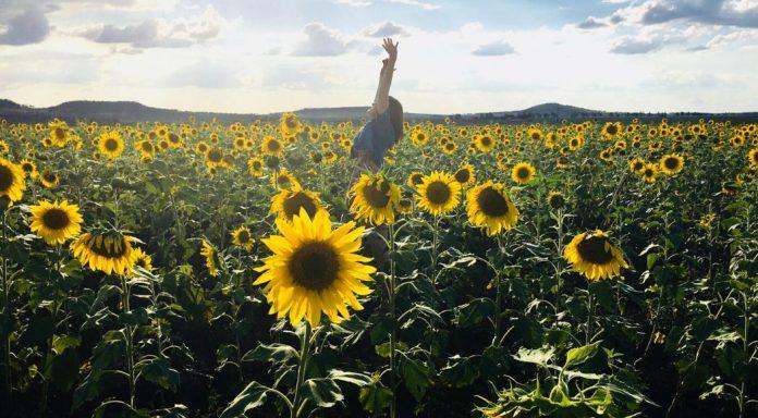 Crescita personale: cos'è