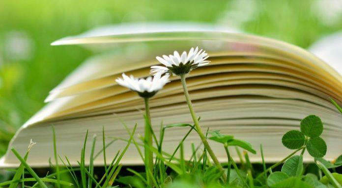 Libri crescita personale | ScoprireCoseBelle